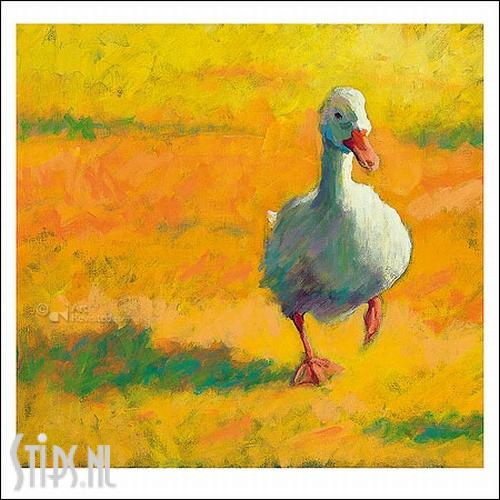 Witte Eend – kunstkaart Theo Onnes
