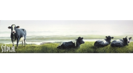Awakening on the dike – Geke Hoogstins – Giclee