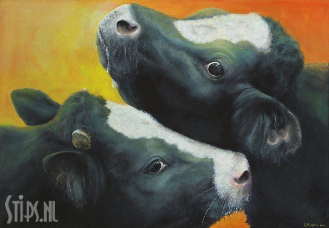 Koeien Knuffel – Geke Hoogstins
