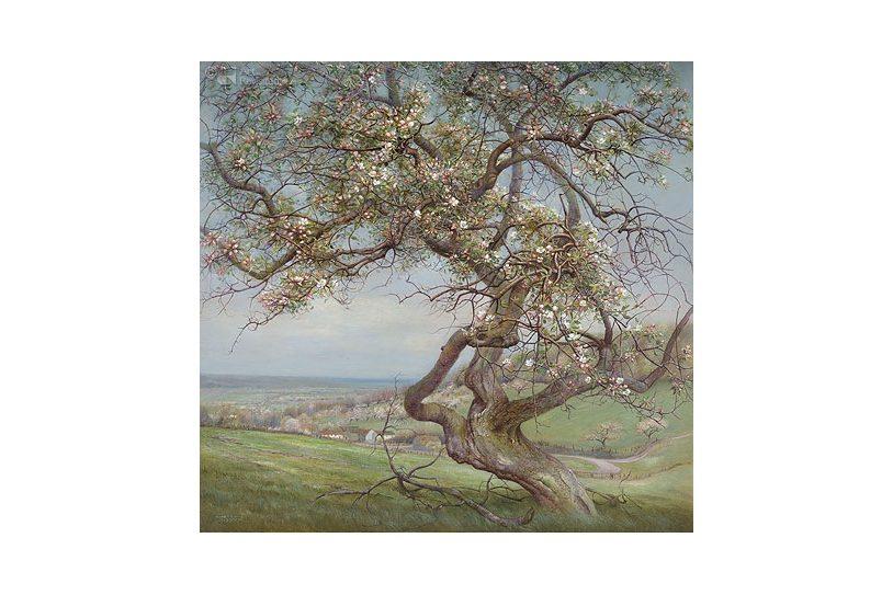 Verjaardagskalender Dutch Landscapes 02