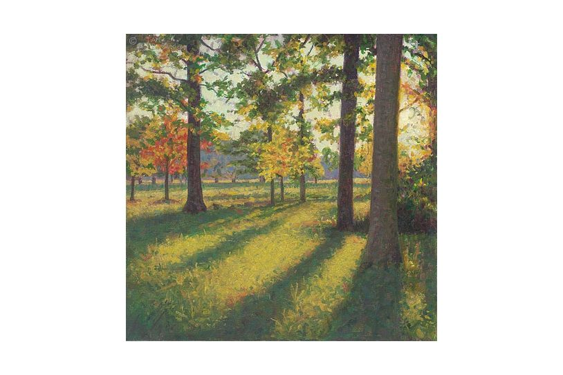 Verjaardagskalender Dutch Landscapes 05