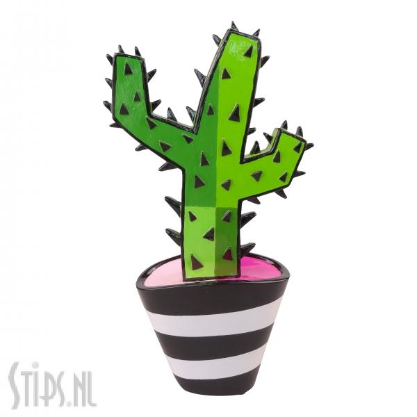 Groene Cactus – Jacqueline Schafer – Gallery Art