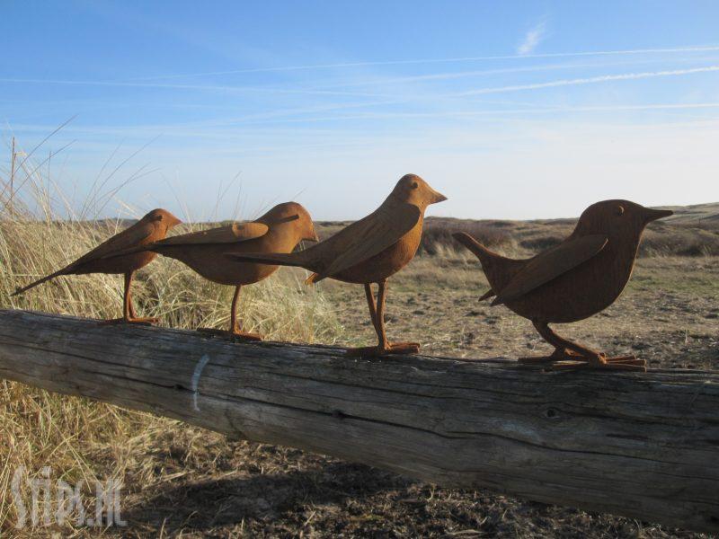 zangvogeltjes van geroest ijzer
