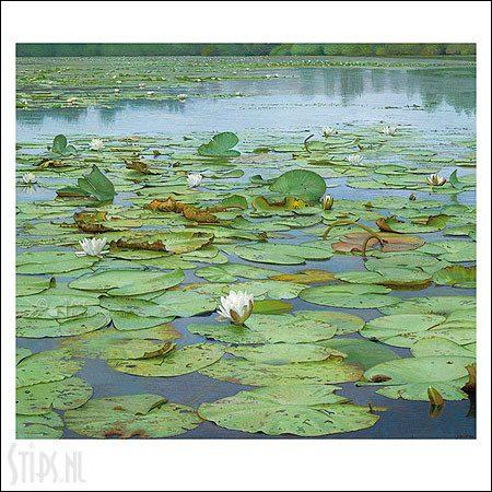 Het stille water – kunstkaart Joke Frima