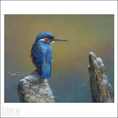 IJsvogel – kunstkaart Erik van Ommen