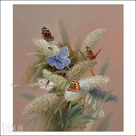 Vlinderstruik – kunstkaart Rein Pol