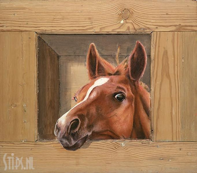 Paard – Johan Mulder – Giclee