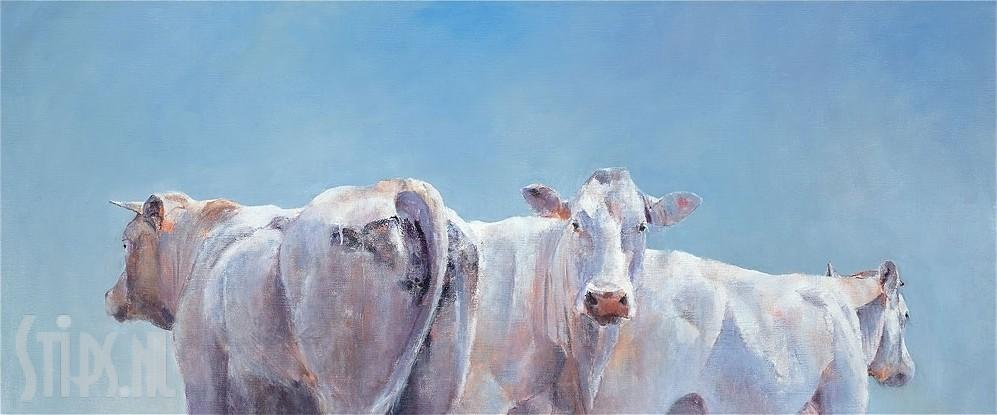 Twee koeien en een stier – Hiske Wiersma – giclee