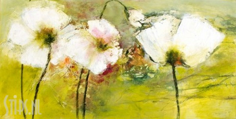 White Poppy – Rose Lamparter – giclee