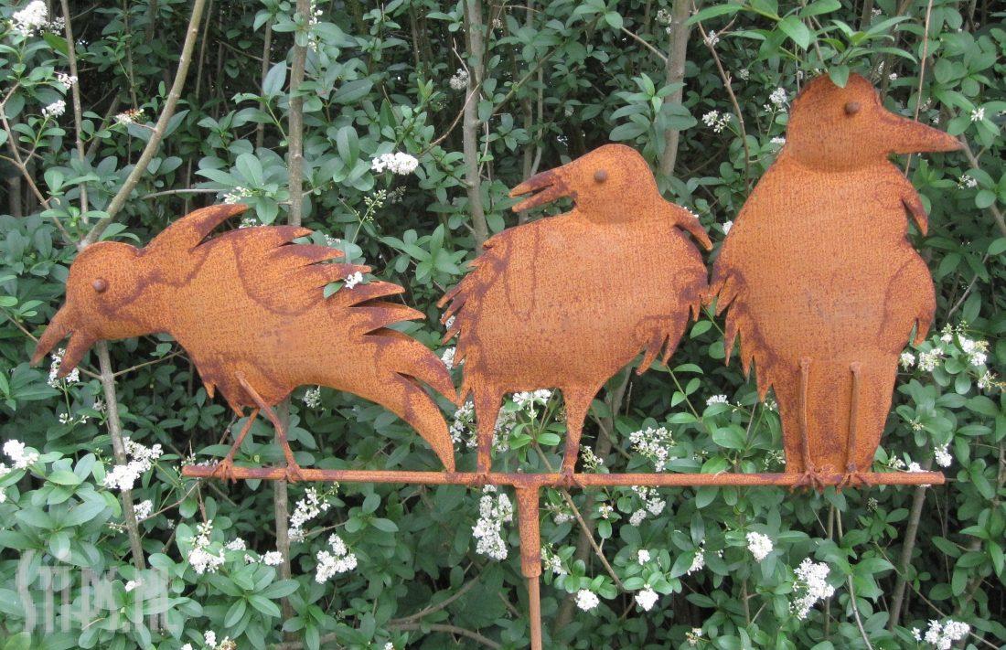 drie vogels op een rij geroest 2