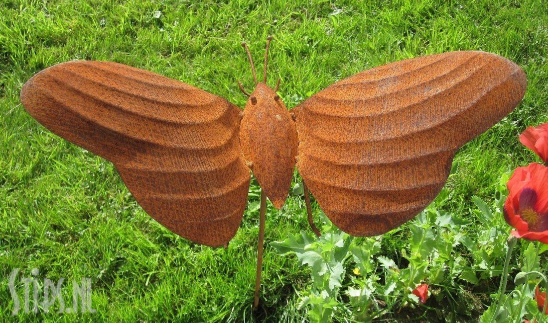 vlinder met streepmotief geroest