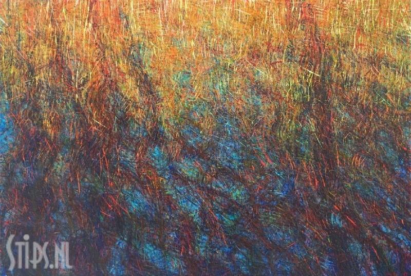 Waterspiegel met riet- Henrie Vogel – giclee