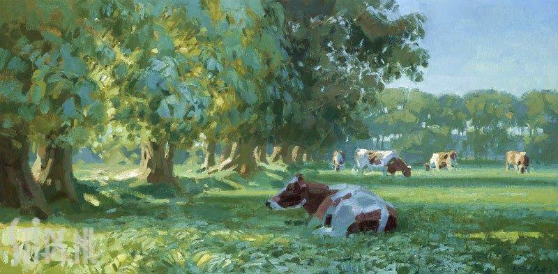Koeien bij bomenrij in ochtendlicht – Hans Versfelt