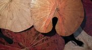 Nieuwe 3D lotus kunst in aardekleuren